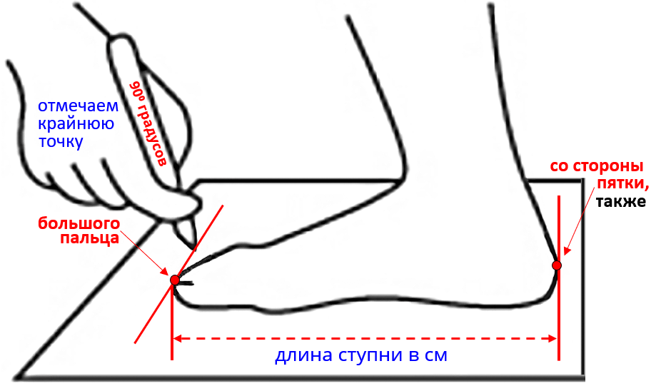 Read more about the article Как определить размер ноги для заказа спецобуви?
