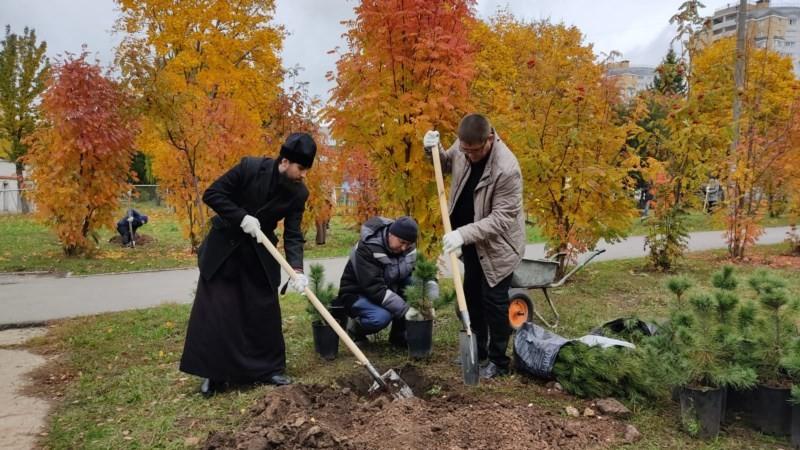 You are currently viewing ТД СоюзСпецодежда в г. Чебоксарах посадила аллею сибирских кедров